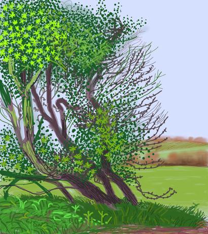 David Hockney Bush iPad Drawing