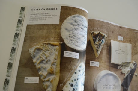 learning-about-cheese